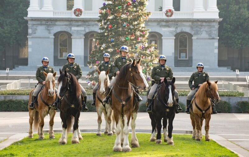 CHP Mounted Patrol